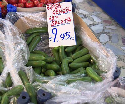 Salatalığın kilosu 9 lira 95 kuruştan satılıyor