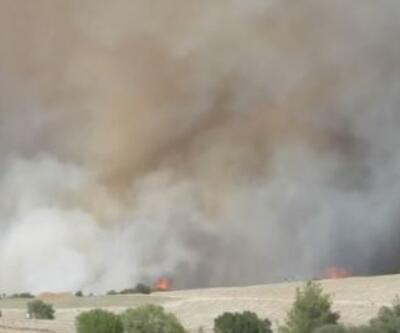 Uşak'taki yangın kontrol altında