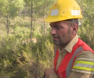 Orman işçisi ağabeyi yaralandı, görevi o devraldı