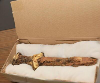 Kazakistan'da keşfedildi! Yüzyıllar öncesine ait