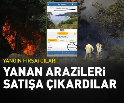 Yangın fırsatçıları: Yanan arazileri satışa çıkardılar
