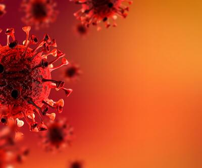 Bilim insanlarından 'norovirüs' uyarısı
