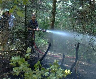 Aydos'taki yangın büyümeden söndürüldü