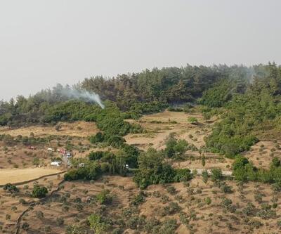 Yeniköy Termik Santrali'nde yangına karşı tedbir alındı