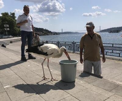 İstanbul Boğazı'nın Yaren'i