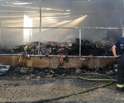 Sirke fabrikasında çıkan yangın korkuttu