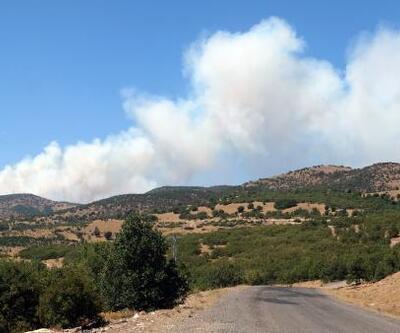 Bingöl'deki orman yangını 5'inci günde