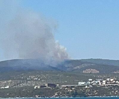 Bodrum ve Milas'ta orman yangını