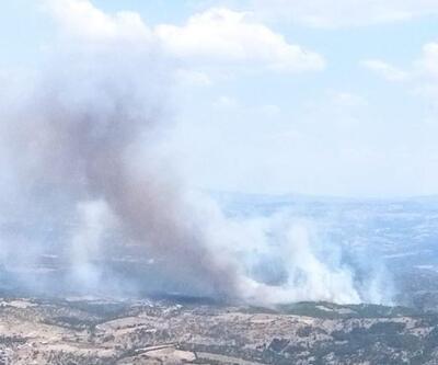 Manisa'da çıkan orman yangınına müdahale ediliyor