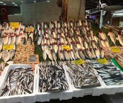 Halden restorana balık fiyatları