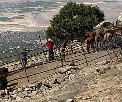 İzinsiz yılkı atı toplayan 4 kişi yakalandı