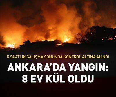 Ankara'da köyde yangın: 8 ev kül oldu