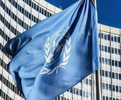 BM Güvenlik Konseyi'nden Afganistan kararı