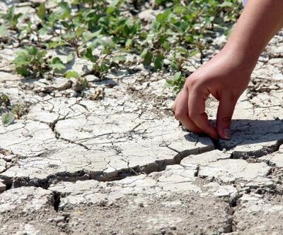 Kuraklık Yarseli Barajı'nı vurdu