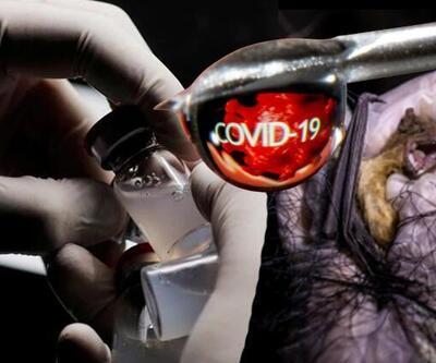 Dünyayı sarsan koronavirüs iddiası!