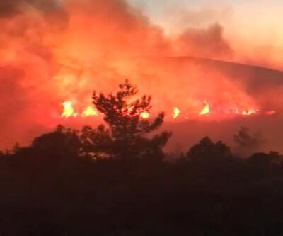Son dakika Karaburun'da korkutan orman yangını