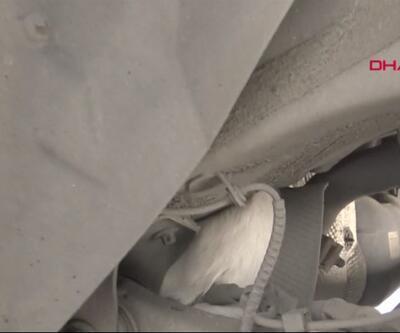 Kedi korktu arabanın altına girdi