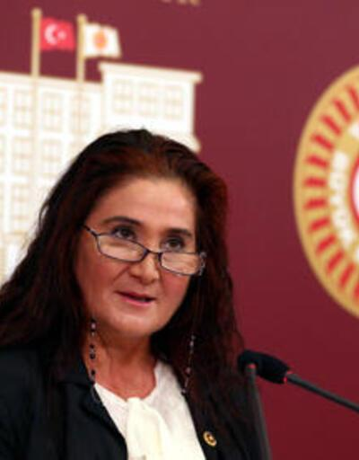 CHP'li Akkiraz hükümete sordu...