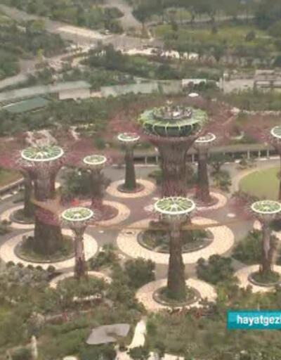 Singapur Bahçeleri'nin özellikleri nelerdir?