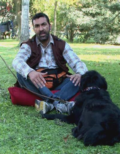 Köpeğimizi severek nasıl eğitebiliriz?