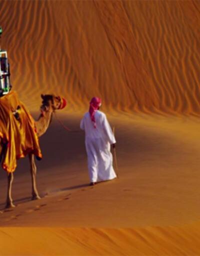 Google için çalışan develer!