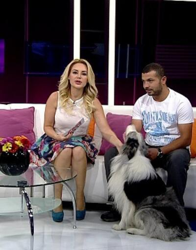 Ahu Özyurt, Ferhan Kaya Poroy ve Can Paksoy Pınar Esen ile Hafta Sonu Keyfi'ne konuk oldu - (28.07.2013)