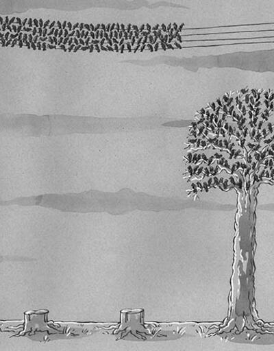 Doğa koruma konulu karikatür yarışması sonuçlandı