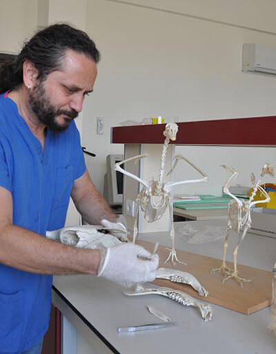 Tarih ve Arkeoloji alanında Türkiye'nin en iyi üniversitesi hangisi?