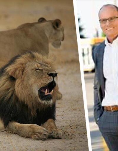 Aslan Cecil'i öldüren ABD'li dişçi hakkında uluslararası tutuklama kararı