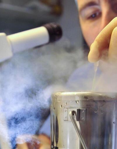 Laboratuvarda insan beyini üretildi