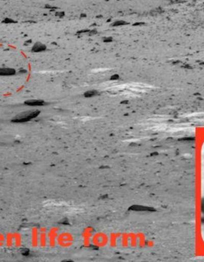 Mars'ta çekilen fotoğrafta dikkat çeken ayrıntı
