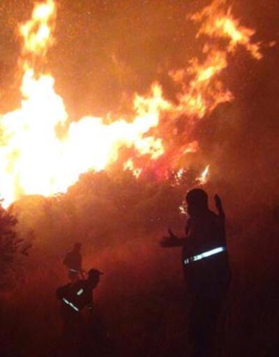 Hatay Amanos eteklerinde orman yangını
