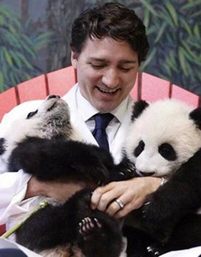 Kanada Başbakanı 2 panda yavrusunu basınla tanıştırdı