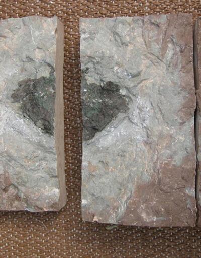 470 milyon yıl önceki çarpışmanın kanıtı mı?