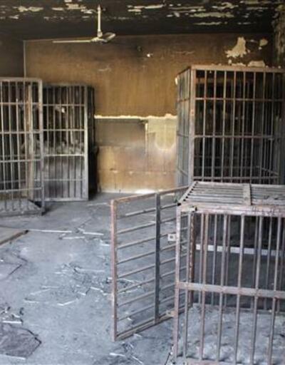 IŞİD, boyun eğmeyenleri bu kafeslere tıkmış