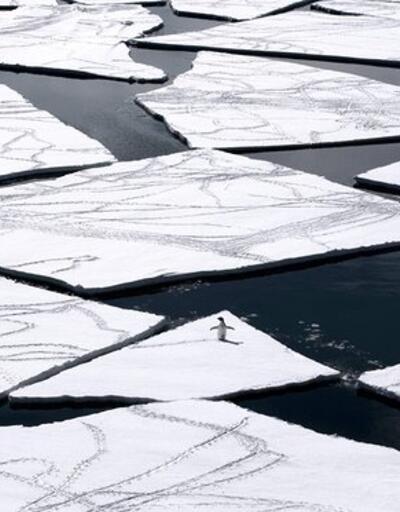 Kuzey Kutbu güneşte unutulmuş dondurma gibi
