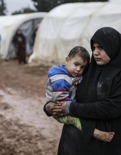 Halepliler'in yaşam savaşı