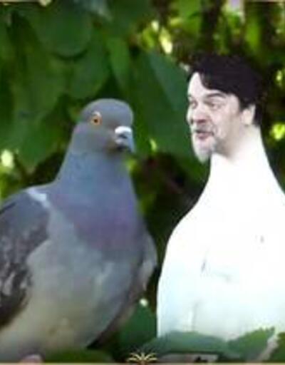 Beyaz Show: Alina Boz'un üstüne pisleyen kuş!
