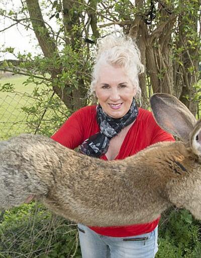Skandallarla gündemden düşmüyordu! Şimdi de dev tavşan krizi çıktı