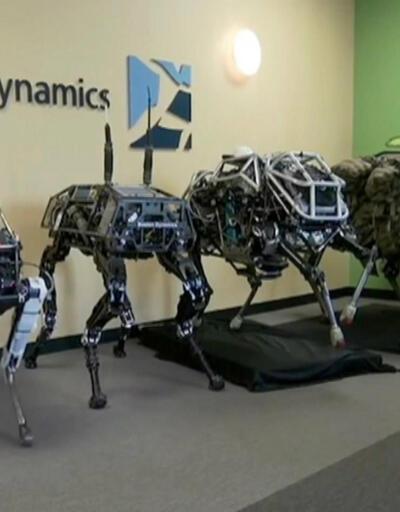 Robot köpekler ticarete atılıyor