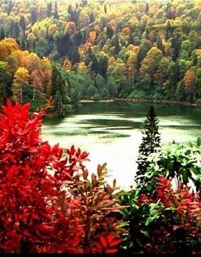 Doğu Karadeniz'in güzeller güzeli 5 kasabası