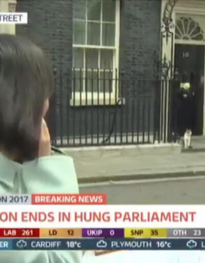 İngiltere'de siyasete nokta koyduran kedi