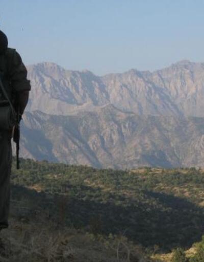 Başta İstanbul, metropolleri kana bulayacaklardı: Dağ kadrosundan 8 PKK'lı yakalandı
