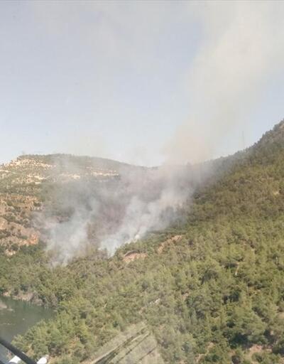 Denizli'de çıkan yangına helikopter ve uçak müdahalesi