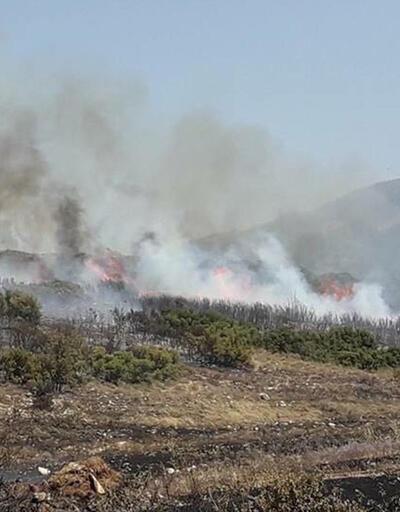 İzmir'deki orman yangını 4 gündür sürüyor