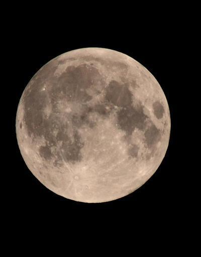 Ay tozu açık artırmaya çıkarılacak