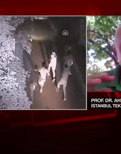 Prof. Dr. Ahmet Ercan Bodrum depremini CNN TÜRK'e değerlendirdi