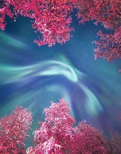 Doğal bir sihir: Rengarenk bir gökyüzünde binlerce yıldız