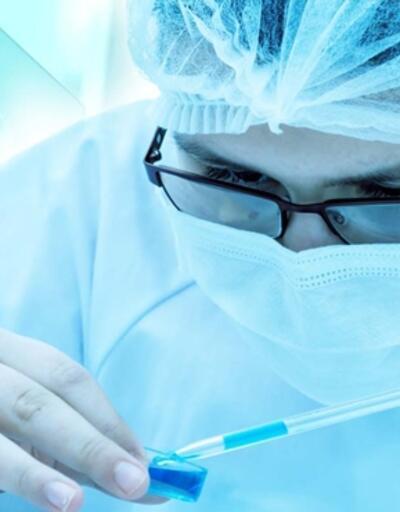 Böcek kanatlarından bakteri öldüren nano-kaplama geliştirdiler