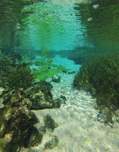 Dünyanın sayılı dalış merkezlerinden biri Eskişehir'de
